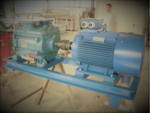 Vacuum pump for leather drying in tannery, in vacuum dryer